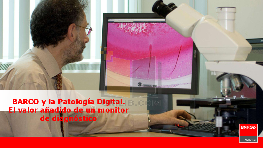 pdf for Barco Monitor Coronis Color 2MP manual