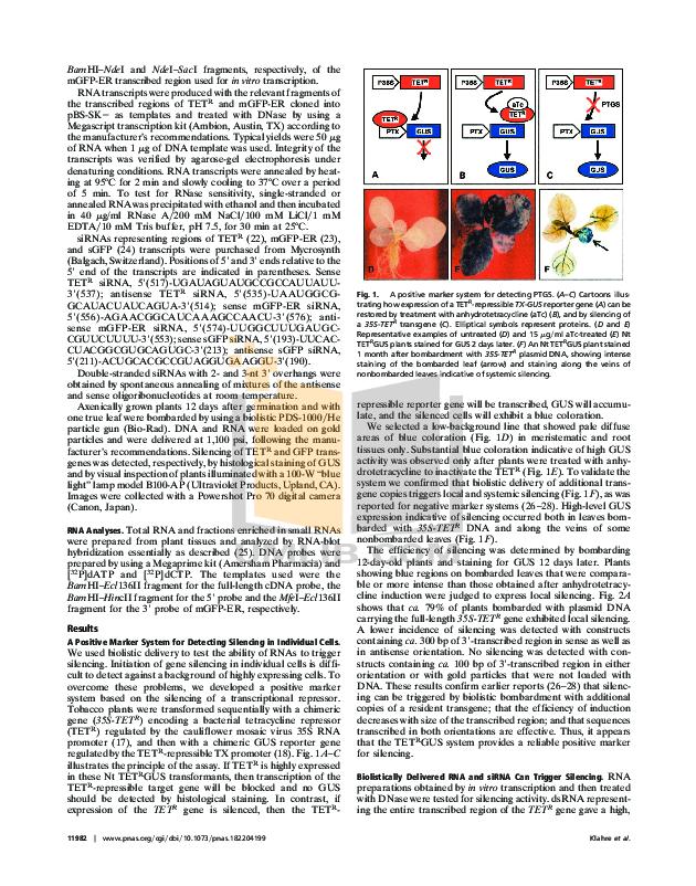Canon Digital Camera Powershot Pro70 pdf page preview