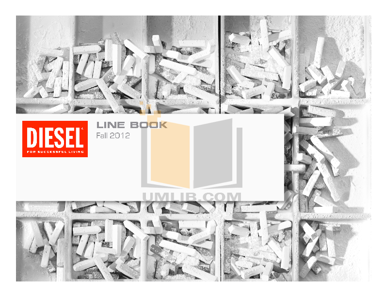 pdf for Diesel Watch DZ1273 manual