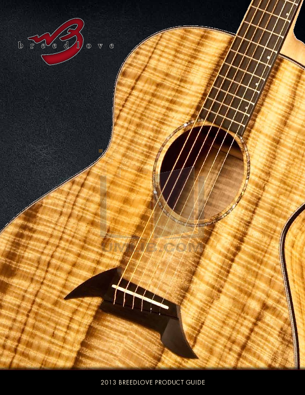 pdf for Breedlove Guitar Performance Series Focus Special Edition manual