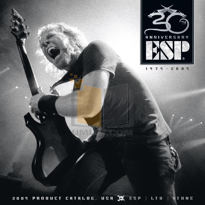 pdf for ESP Guitar EX-400 manual