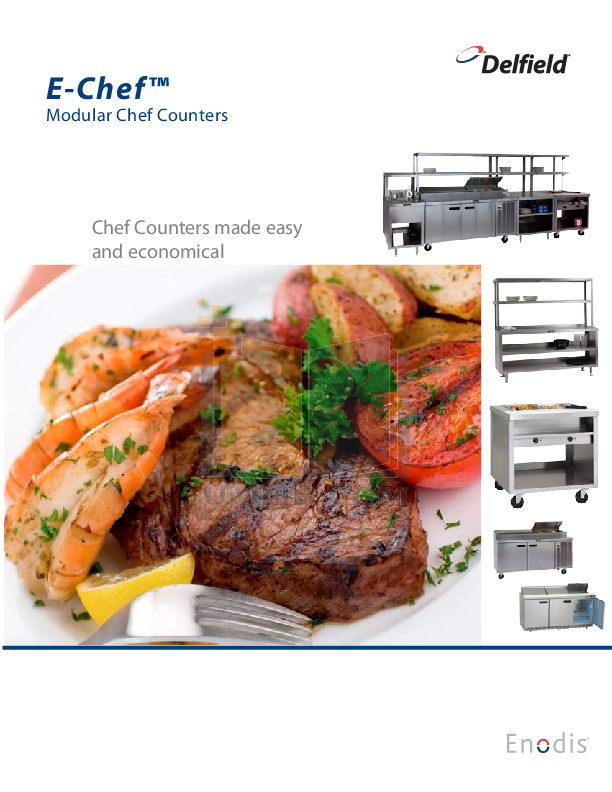 pdf for Delfield Other E-Chef ESSW36 Hot Food Table manual