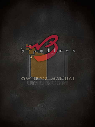 pdf for Breedlove Guitar Performance Series Focus Dreadnought manual