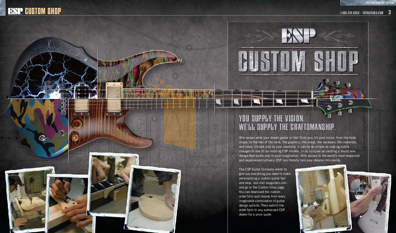 ESP Guitar WA-600 pdf page preview