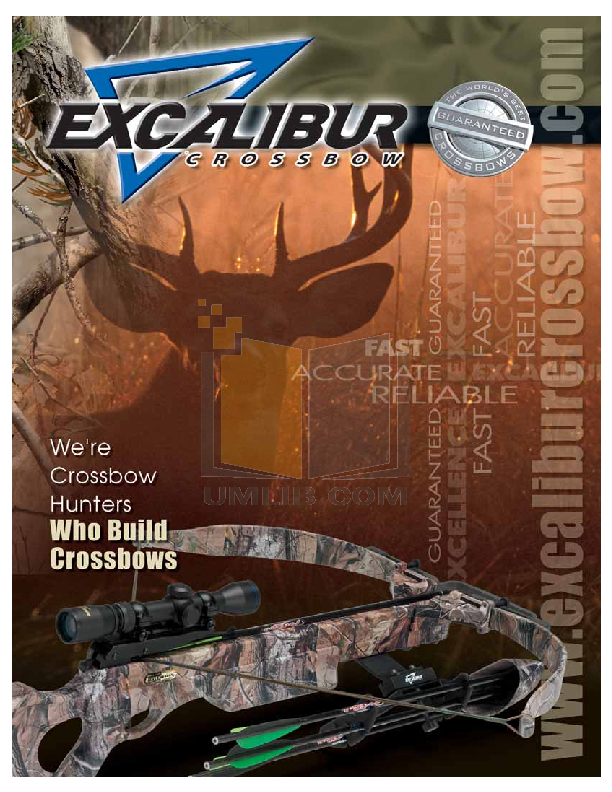 pdf for Excalibur Game Console 330 manual