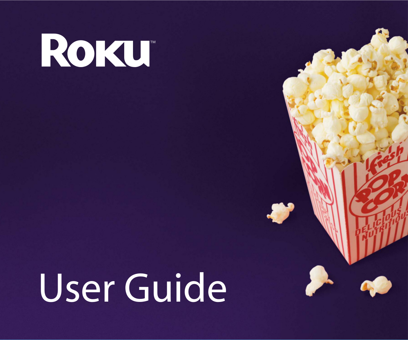 pdf for Roku DVR Netflix Player manual