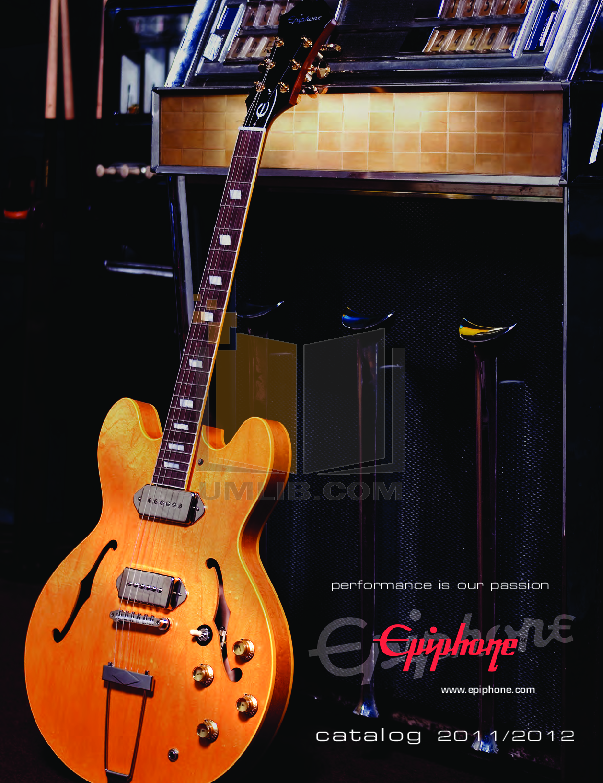 pdf for Epiphone Guitar AJ-500M manual