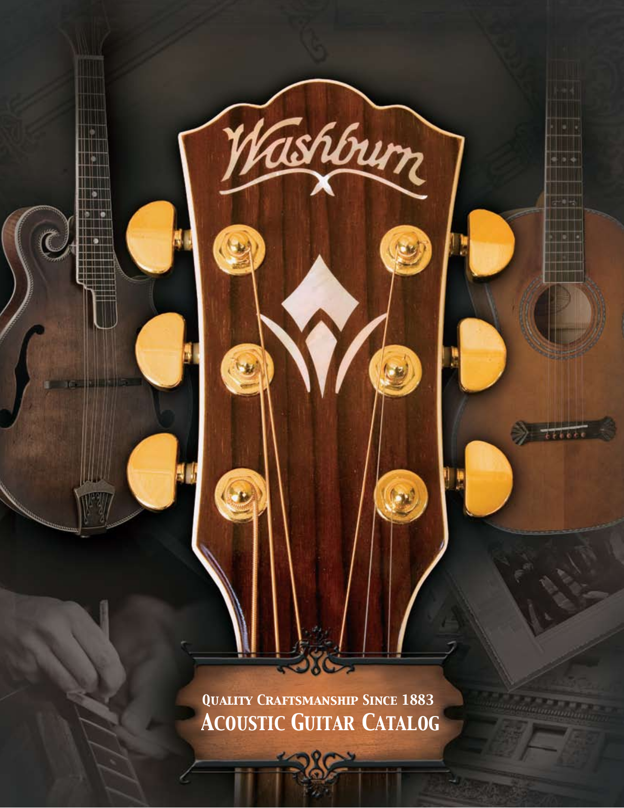 pdf for Washburn Guitar WD20S manual