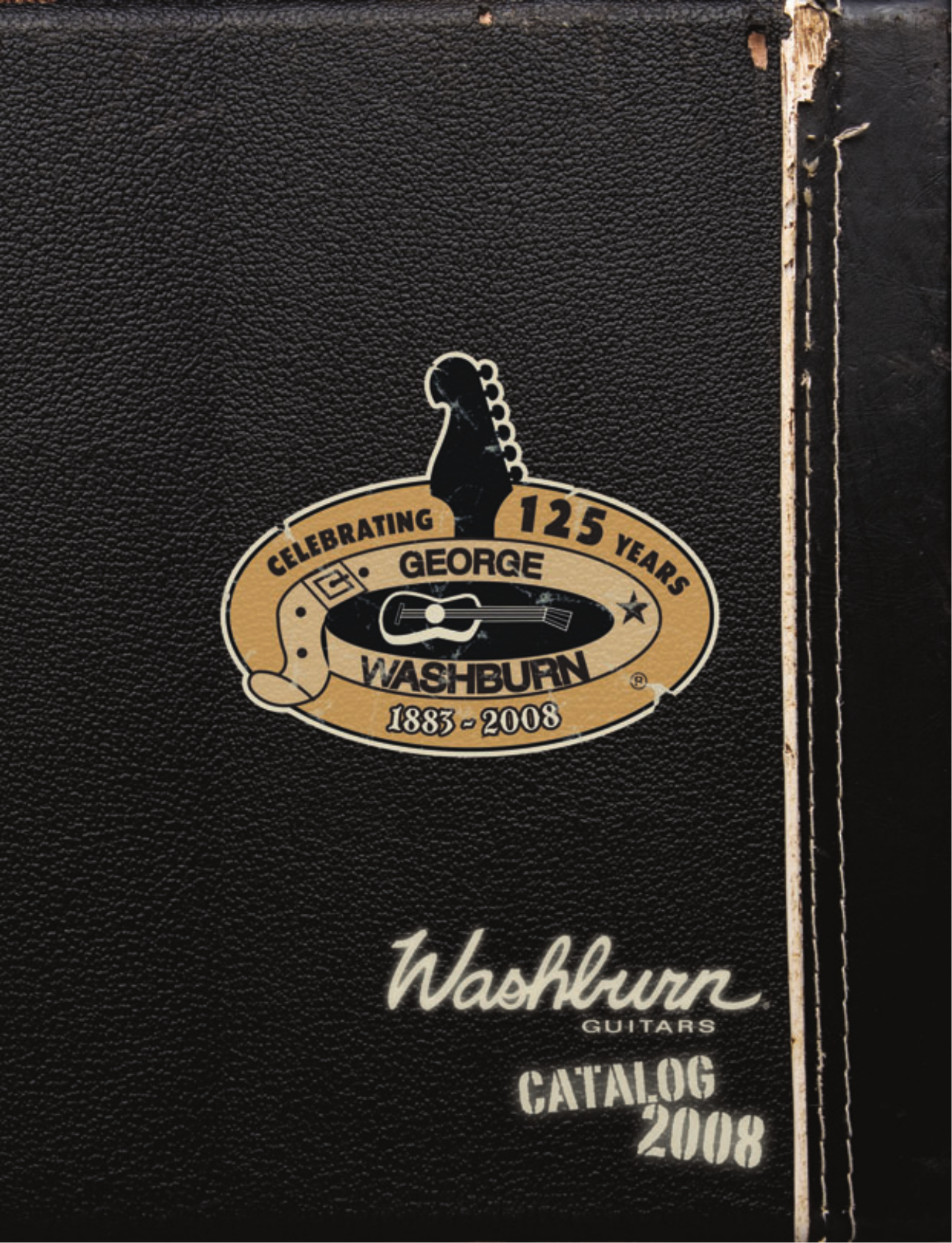 pdf for Washburn Guitar Festival Series EA20SDL manual