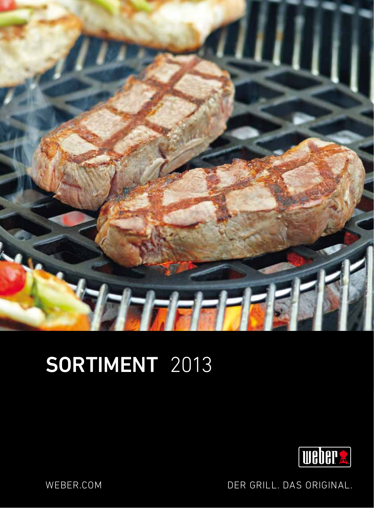 pdf for Weber Grill S-670 manual